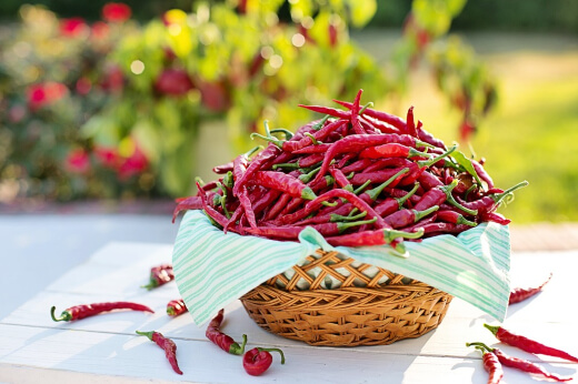 Chillies boost immunity and help you lose weight