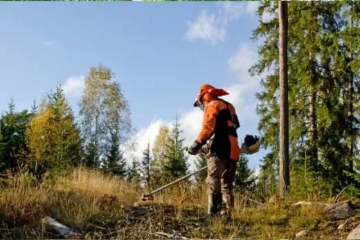 A brush cutter is designed to cut tall grass