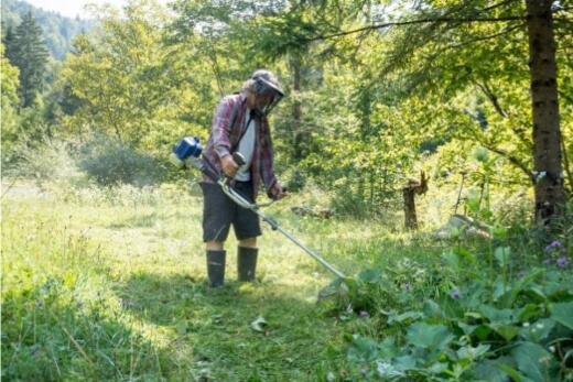A man using one of the best brush cutter