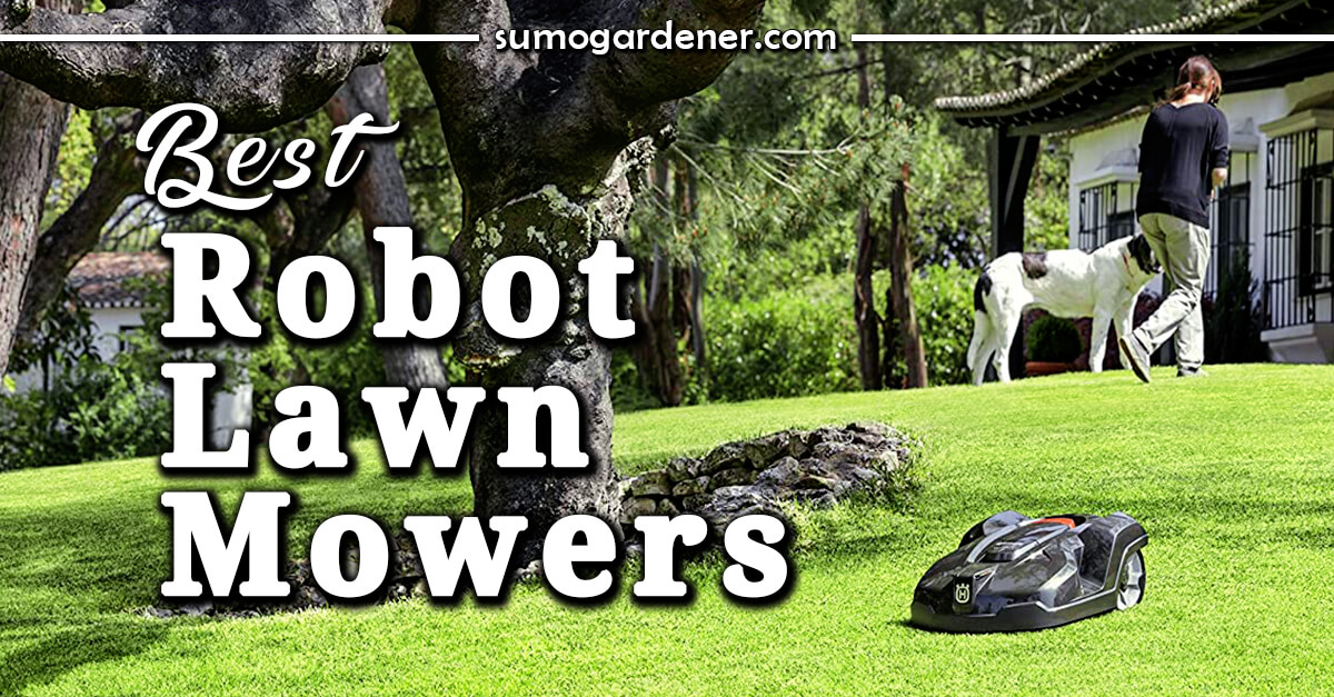 11 Best Robot Lawn Mowers in 2021