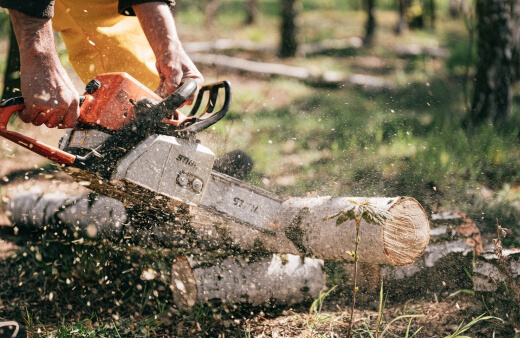 What Can Chainsaws be Used For