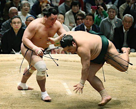 El Yokozuna Harumafuji no pudo reeditar la victoria de ayer y caía hoy derrotado de forma sorprendente ante Kotoyuki (Foto: Sumoforum.net)