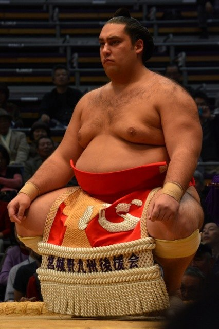 Gran torneo del brasileño Kaisei, que será Sekiwake en el próximo Nagoya Basho (Foto: Martina Lunau)