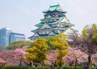 Osaka castle with cherry blossom. Japanese spring beautiful scene