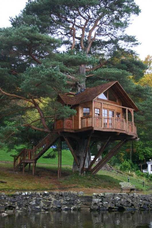 18 Model Rumah Pohon Minimalis Indah dan Unik  RUMAH IMPIAN