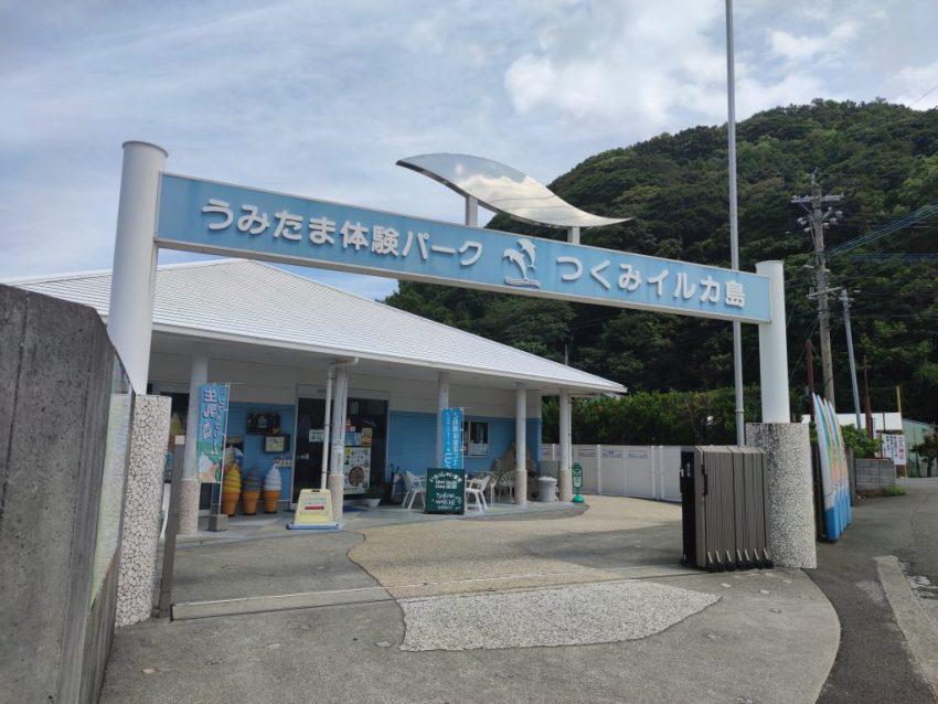 【つくみイルカ島】津久見市観光の名所!イルカたちとの触れ合い体験🐬(前編)