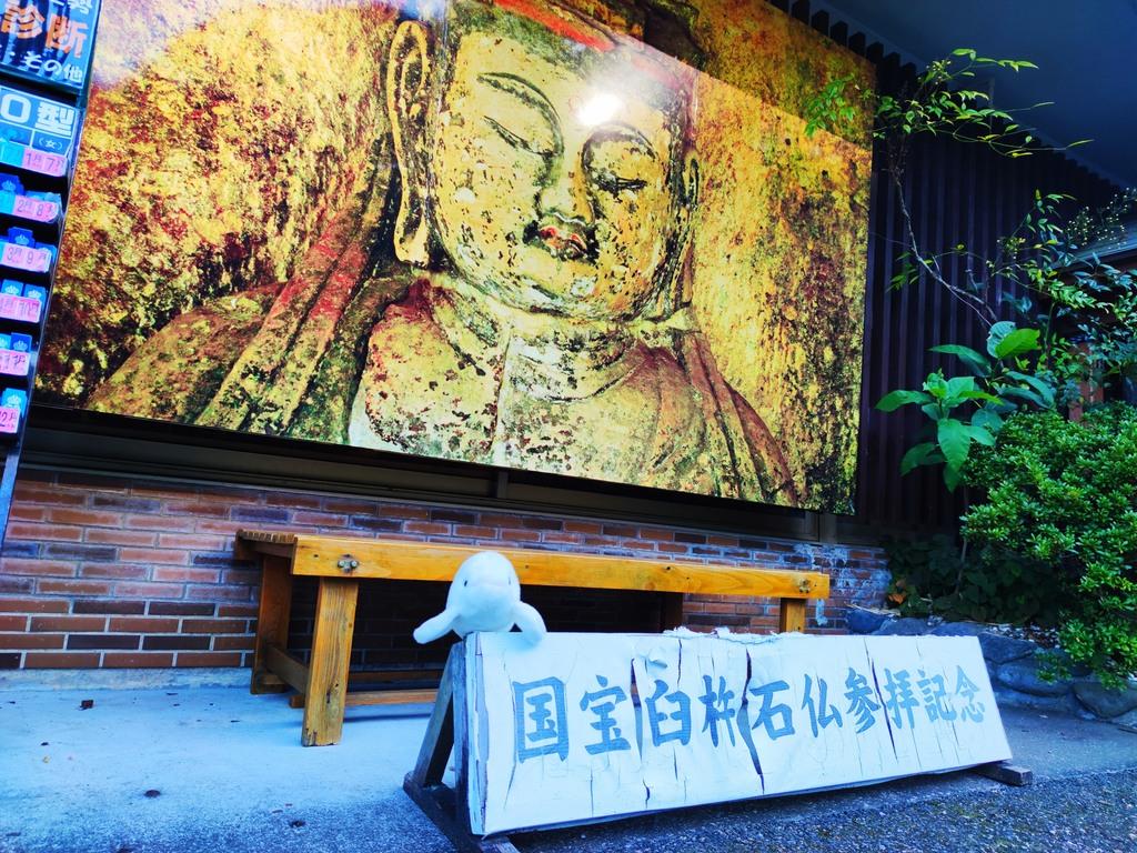 【国宝 臼杵石仏】臼杵市の観光名所、質の高さで日本を代表する石仏群を見学!
