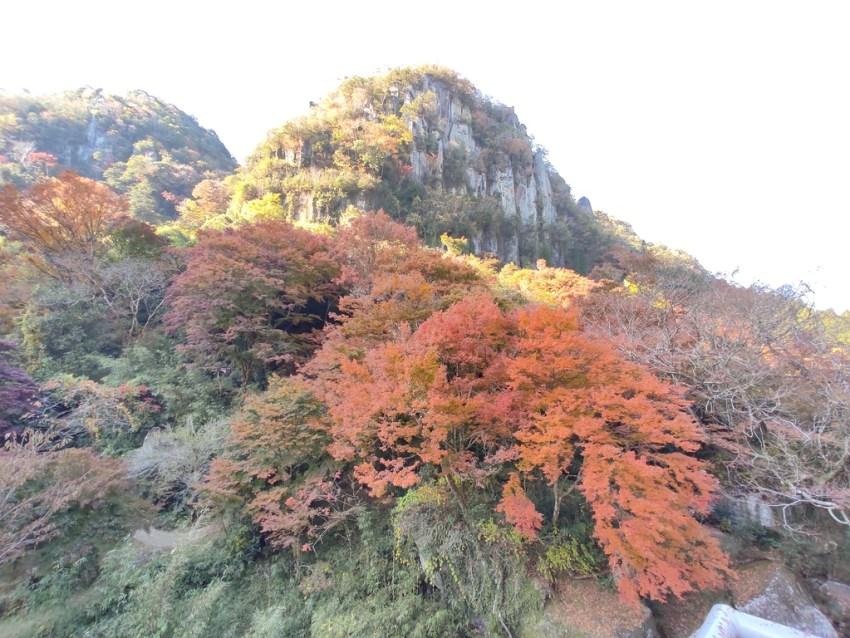 【中津市 一目八景】耶馬渓の中でも人気の紅葉スポット♪一面の紅葉風景にウットリ☆