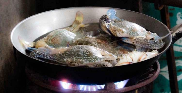 Blaue Krabben im Wok