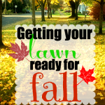 Getting your lawn ready for fall