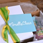 Enjoying Spring With A House That #SmellsClean