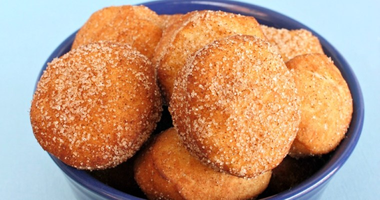 Cinnamon Sugar Doughnut Holes Recipe