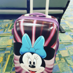 American Tourister Luggage Review: From A Frequent Traveler And 6-Year-Old