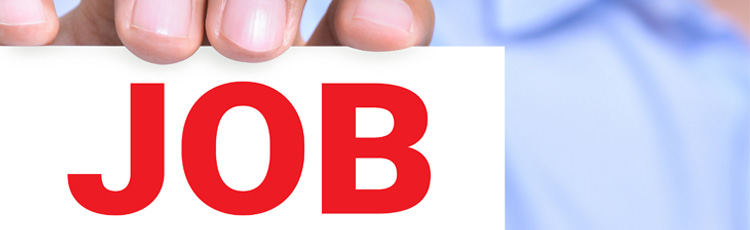 Bangkok Careers  About Us  Sunbelt Asia Co, Ltd