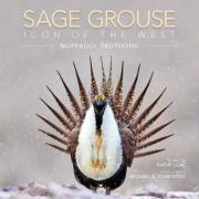 Sage Grouse: