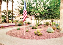 A previous Garden Club project on the corner of Waterview and Championship. The trees have grown in and now provide lovely shade for sitting and viewing the fountain. This year the Garden Club trimmed the trees, repainted the low wall and added solar lights. Each year the Garden Club has a lot of replanting; the Arizona weather that we love also plays havoc with some of our gentle plants.