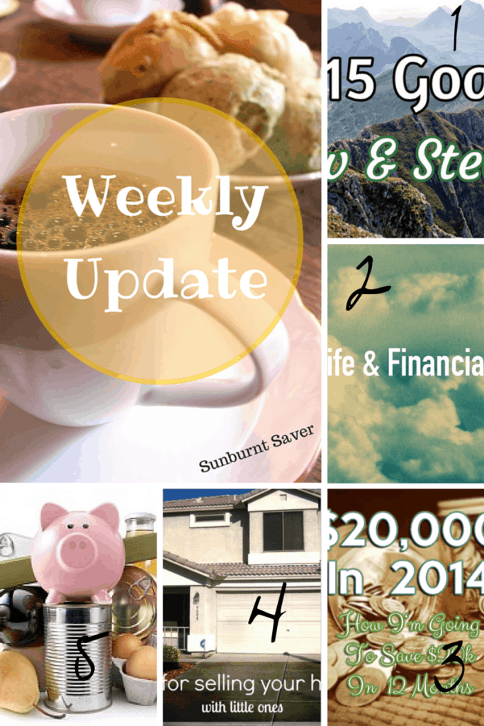 Weekly Update for Sunburnt Saver the week of January 1st.