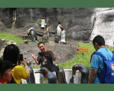 陽光巴士關懷活動動物園之旅