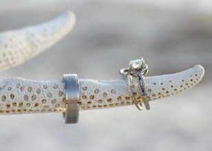 starfish and rings in detail