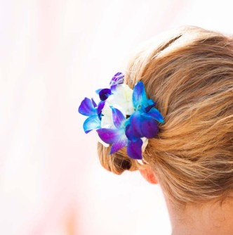 orchids hair