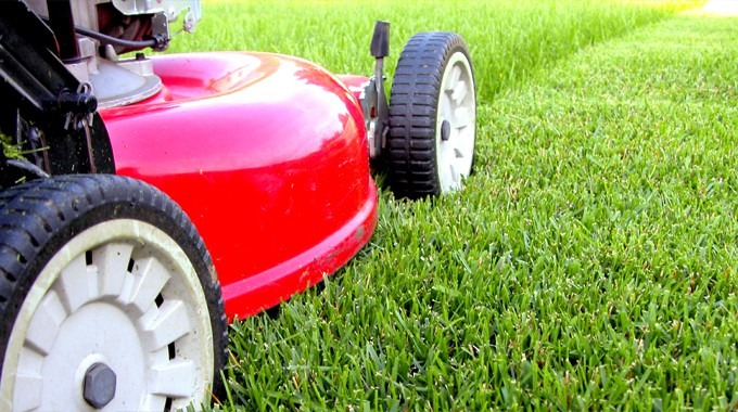 Lawn Maintenance Services in Katy, TX