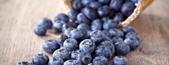 blåbær