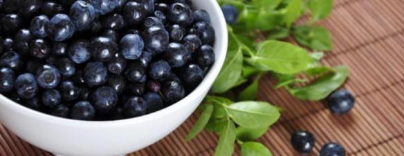 blåbær_1