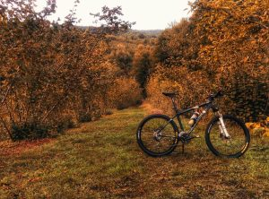 fall-foliage-mountain-biking-sundance-vacations