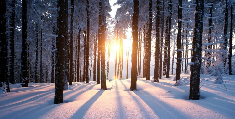 winter in the smoky mountains sundance vacations