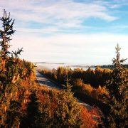 Fall Foliage: Best Places to See Autumn Colors in Colorado, Tennessee and Missouri