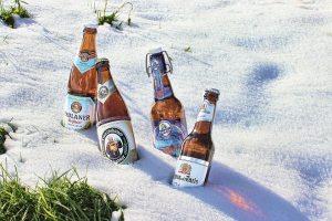 beer-bottles-in-the-snow