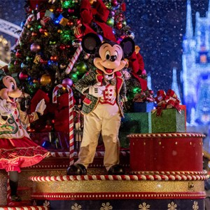 Holiday Season at Walt Disney World Florida