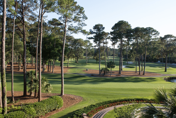Must Play Golf Courses in South Carolina