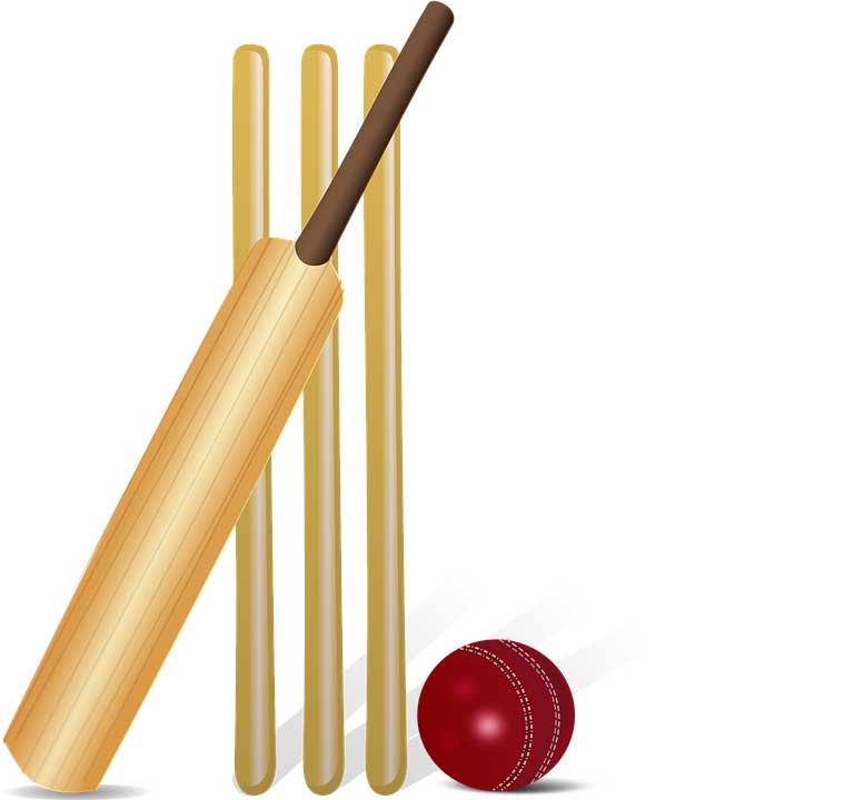 Cricket-Kit