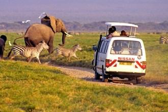 safari-minibuses-car-hire-kenya02