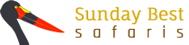 Sunday Best Safaris Logo