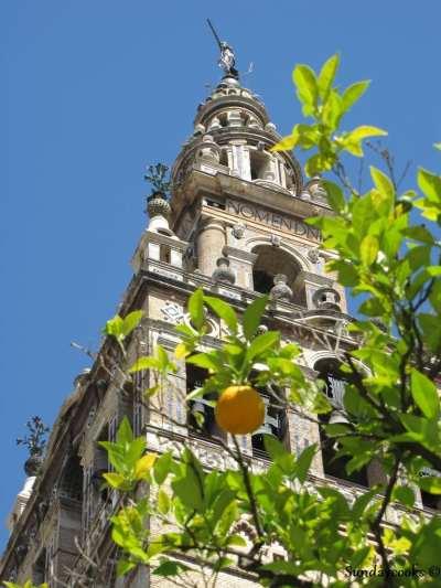 torre da giralda e o pátio das laranjeiras