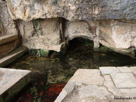 Coimbra - fonte Inês de Castro