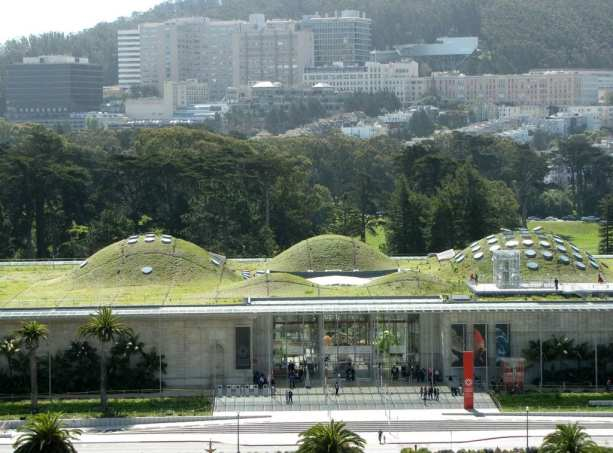 golden gate park california academy of science