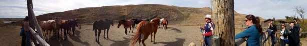 La Reata Ranch - Panorâmica