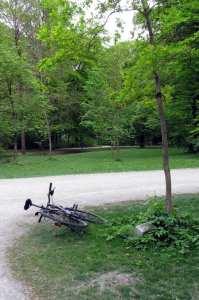 English Garden de Munique - bicicleta
