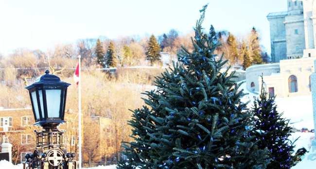 Natal e ano novo na neve de Montreal - Pinheiro e poste