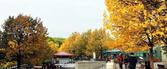 Viajar de trem no Canadá - The Canadian - Winnipeg: Parque