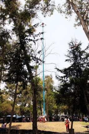 Roteiro pelo Bosque de Chapultepec - Voladores de Papantla