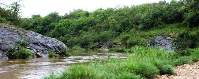 Serra da Canastra - O Rio São Francisco ainda é pequeno por aqui