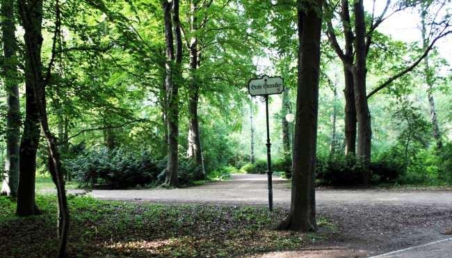 Tiergarten de Berlim - passeio de bike-táxi 3