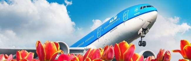 Dicas KLM Viagem - aviao