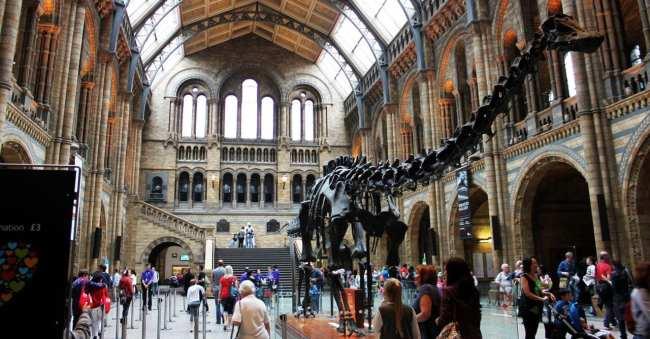 Guia de Londres KLM - Museu de História Natural