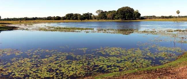 ABC do Pantanal - Fazenda São João 3