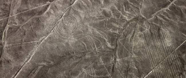 Sobrevoo pelas linhas de Nazca - macaco 2